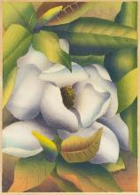 LUIGI RIST Magnolia Grandiflora.