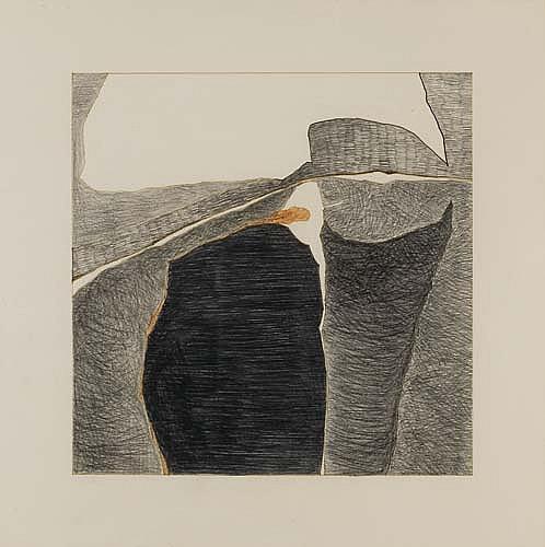 DAN CONCHOLAR (1939 -  ) Organic Forms.