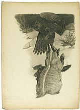 """PAUL BRANSOM. """"The next instant under a powerful impulse of his wings the owl was gone."""""""