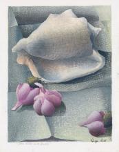 LUIGI RIST Seashell and Garlic.