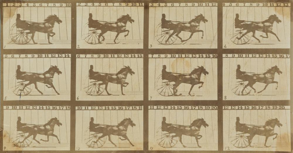 EADWEARD MUYBRIDGE (1830-1904) The Horse in Motion (composite).