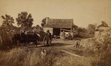 GEORGE L.G. COOK (1819-1902) African American group with an ox-drawn cart, two dogs, and chickens.