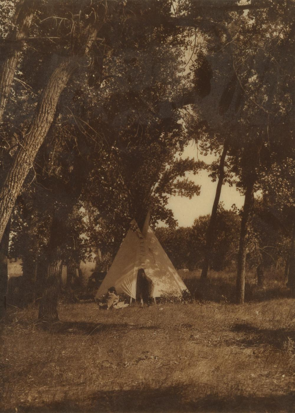EDWARD S. CURTIS (1868-1952) Camp in the Cottonwoods, Cheyenne, plate 217 from The North American Indian.