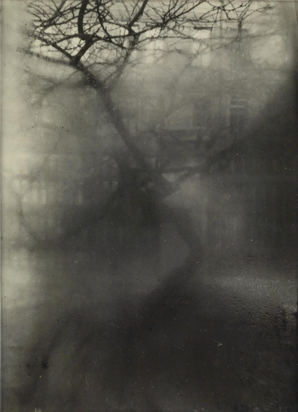 JOSEF SUDEK (1896-1976) From My Window.