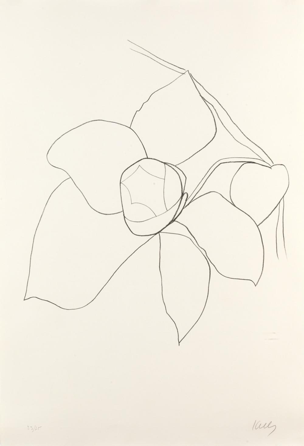 ELLSWORTH KELLY Camellia II.