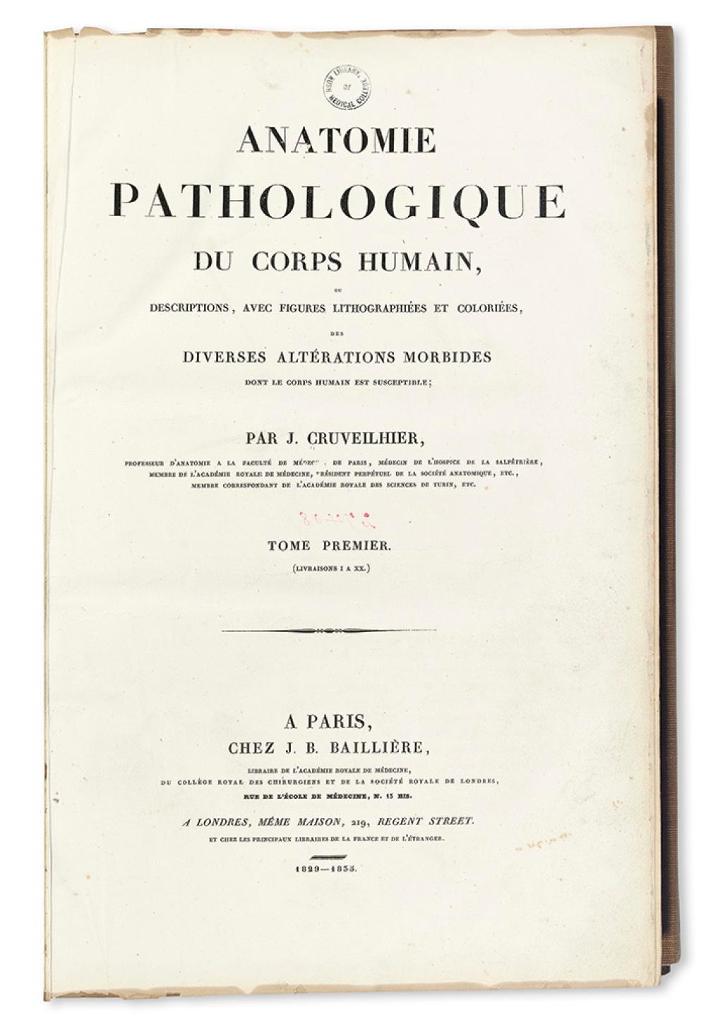 Cruveilhier jean anatomie pathologique du corps humain 2 for Interieur du corps humain image