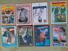Hall of Fame Baseball Card Lot