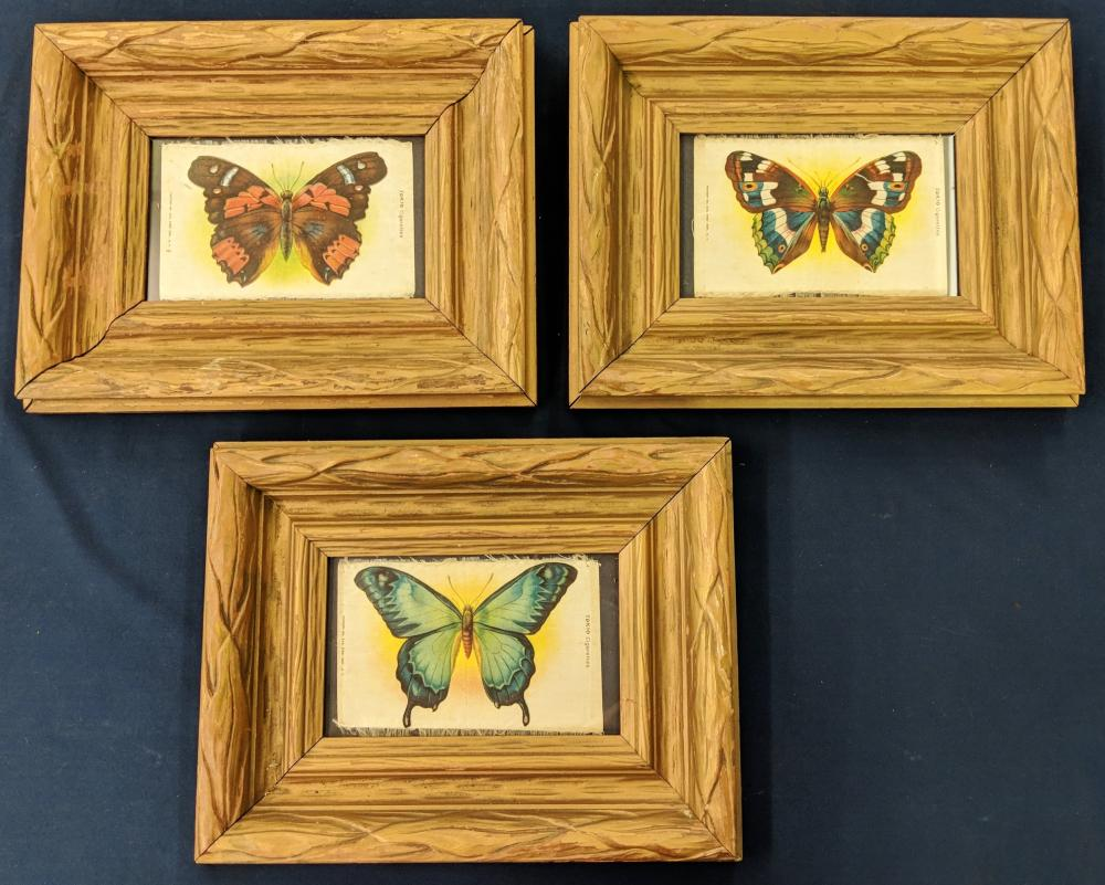 3 Framed Butterfly Tobacco Silks