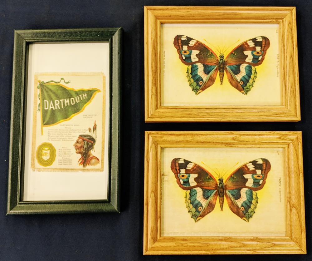 Lot 134: 2 Butterfly Silks & 1 Dartmouth College Silk
