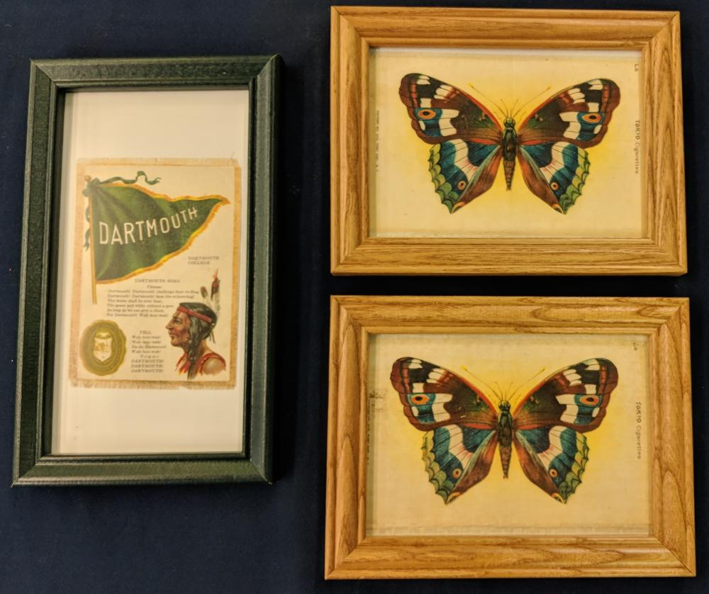 2 Butterfly Silks & 1 Dartmouth College Silk