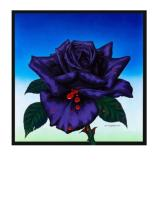 Jim Fitzpatrick: Black Rose