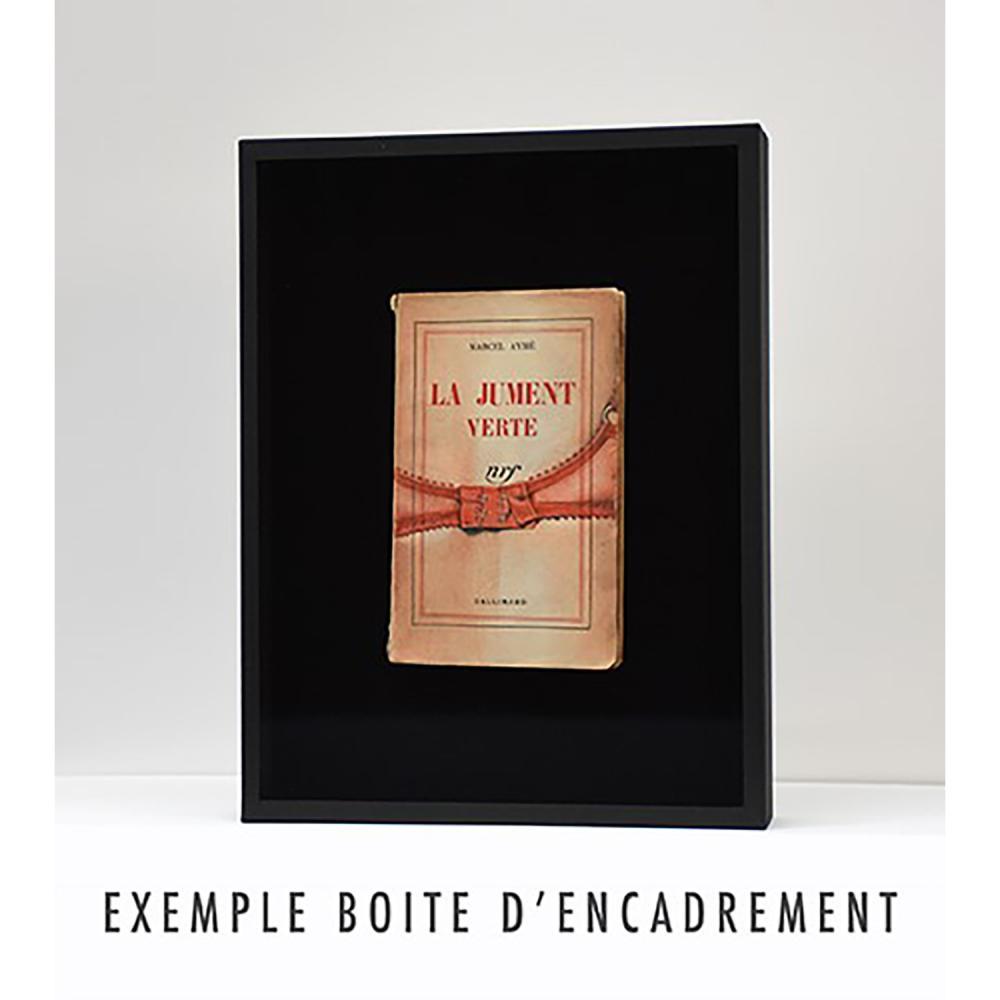 """France Bizot """"Sacrifiée"""" Dessin sur la couverture de l'ouvrage de Pierre Nora, """"Jeunesse"""" (Gallimard), 2021 Crayon sur livre:..."""