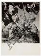 Roger Schall (1904-1995) Grappe de raisin, vers 1940 épreuve argentique, portant le cachet du photographe au verso 18,2 x 13 cm