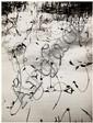 Lucien Clergue (né en 1934) L'eau, 1960 Épreuve argentique, portant le cachet du photographe au verso 23,9 x 18,2 cm