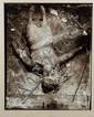 Bruno Wagner (né en 1965) Le ventre, dont la bête est sortie, est encore chaud, 1997 Tirage argentique viré sépia sur papier baryté ...