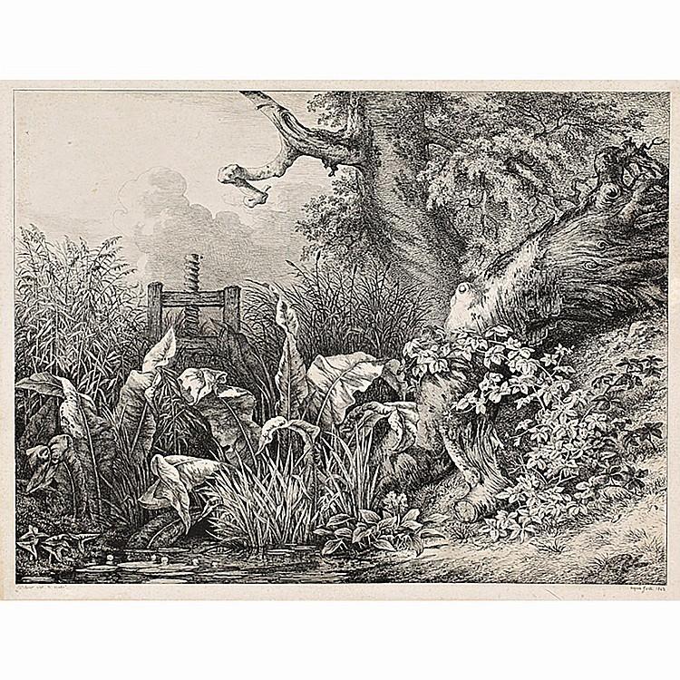 EUGÈNE BLÉRY (1805-1887) ET AUTRES ARTISTES LA PATIENCE D'EAU ET RONCE À LA VANNE-ÉTUDE DE PLANTES