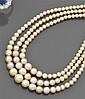 Collier de perles fines Il est composé de trois rangs de perles fines disposées en chute. Fermoir en or jaune uni. Poids brut : 22,5...