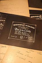 Disney Curious/Related 13 x BBFC Certificates