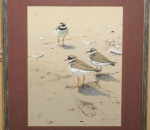 Alan M. Hunt (b.1947) Ringed plovers on a beach