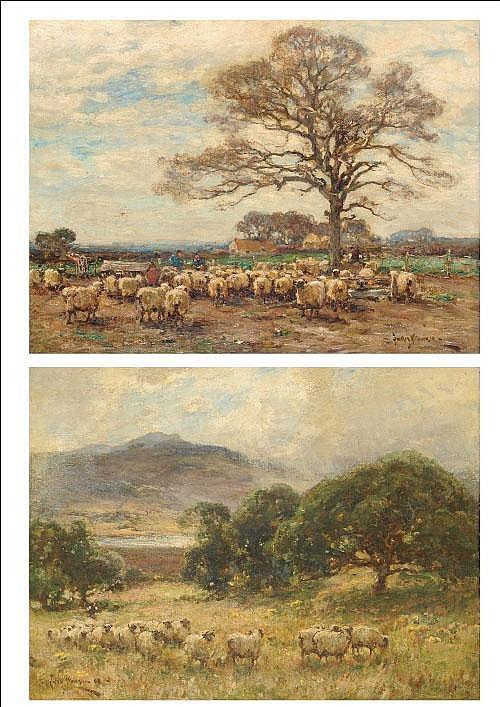 Owen Bowen ROI, PRCamA (1873-1967) Sheep in a