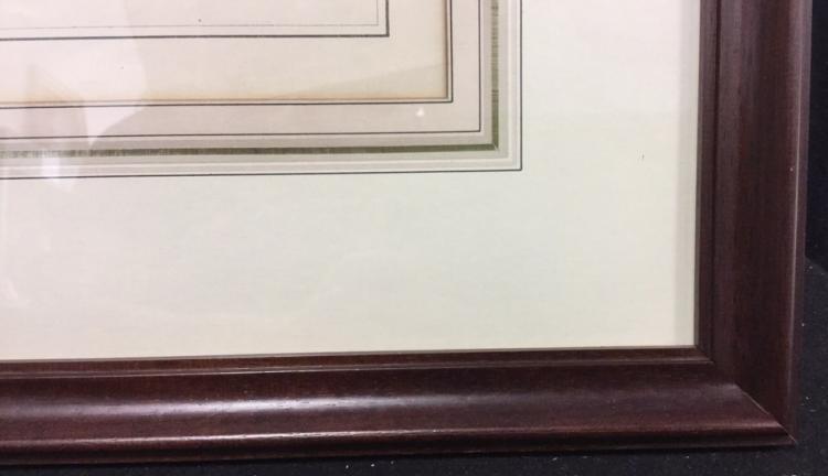 Map Of White Plains Print Framed