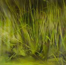 Li XiaoLing Oil Painting Grass