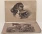 Art Prints Studies in Two Crayons / Sir Edwin Landseer