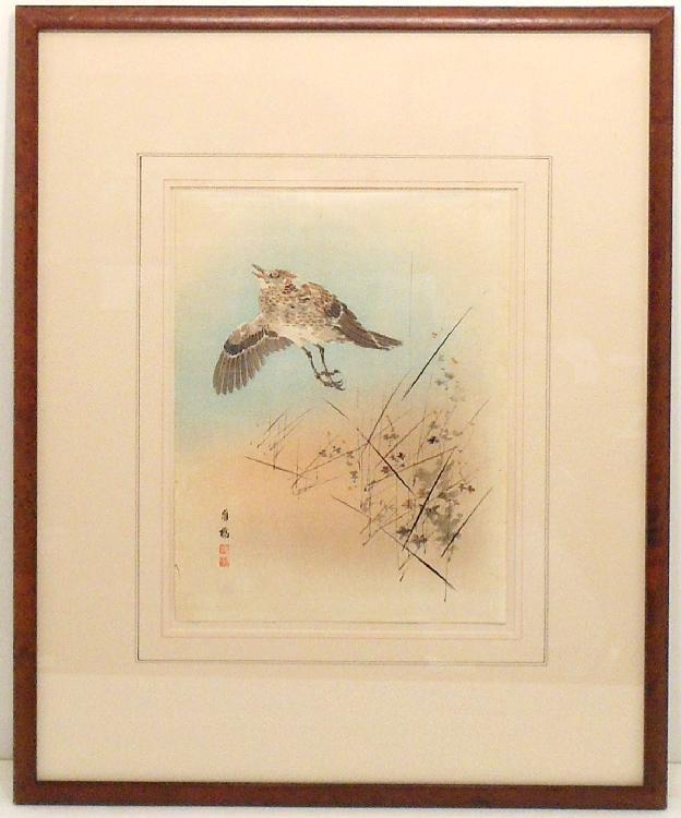 Watercolor Bird in Flight