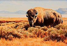 Buffalo, oil painting by Barbara Peets