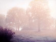 Ethereal Oaks, oil painting by Michael Orwick
