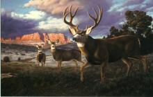 Approaching Storm, oil painting by Tom Mansanarez