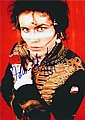 Adam Ant Autographed publicity photograph