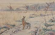 Edouard Paul MERITE (1867-1941) Le lièvre
