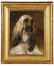 OIL ON PANEL - Bust Portrait of an Afghan Hound, unsigned, 20th c. In water gilt molded frame. SS: 9 1/2