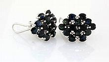Cluster Sapphire 38.34CTW Sterling Silver Earring - L19101