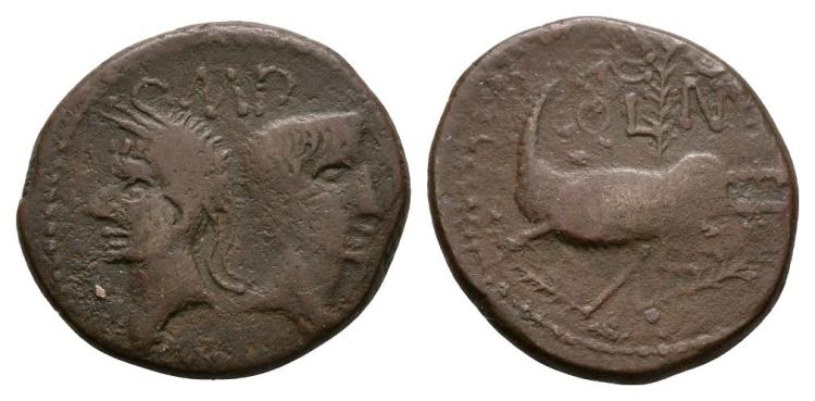 Augustus and Agrippa - Crocodile Dupondius