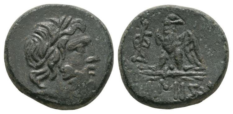 Amisos - Eagle Bronze