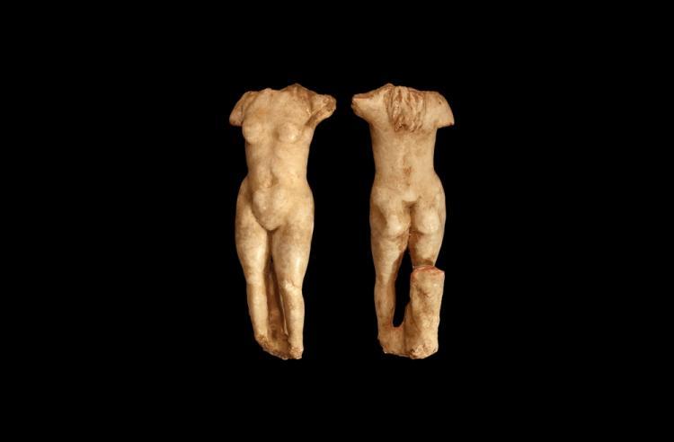 Roman Goddess Venus Torso