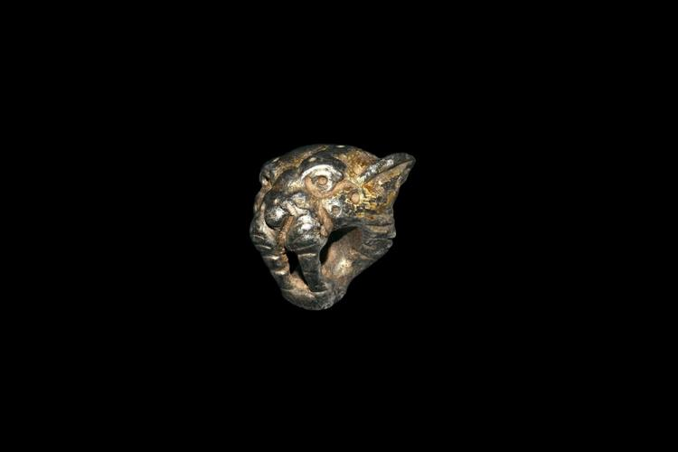 Roman Lioness Head Mount