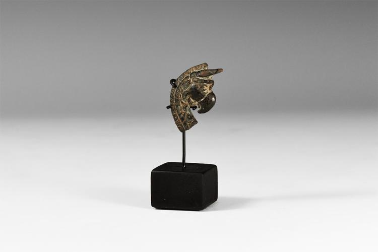 Greek Head of a Gryphon