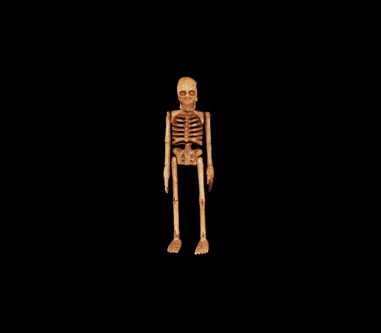Post Medieval Skeleton from a Miniature Coffin
