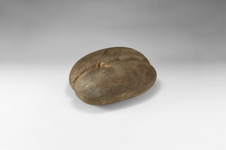 Ethnographic Coco De Mer Nut