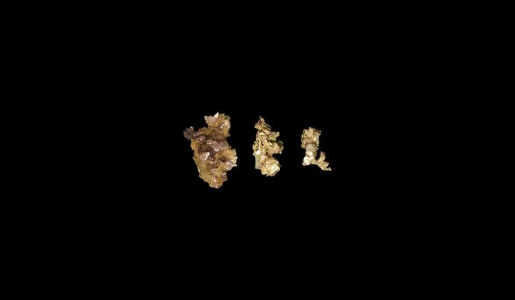 Natural History - Native Gold Mineral Specimen Group.