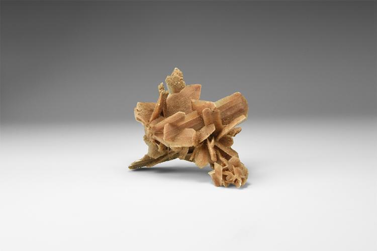 Natural History - 'Hourglass' Gypsum Desert Rose.
