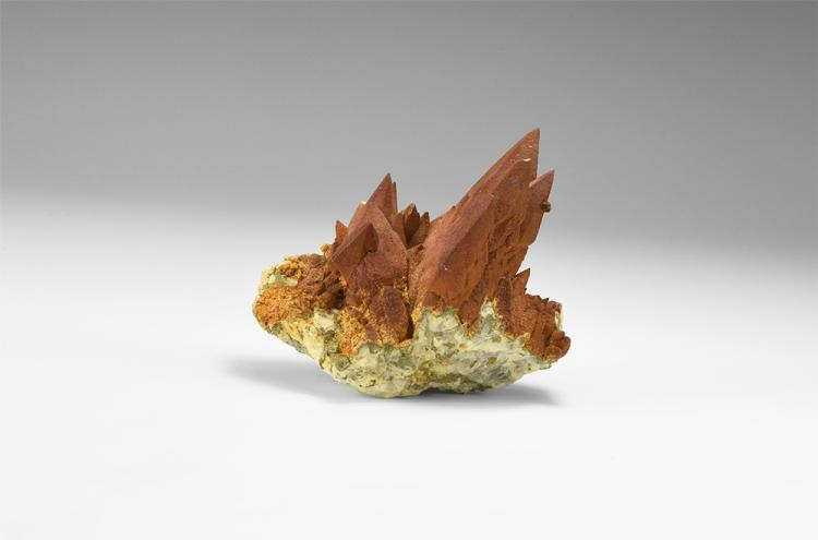 Natural History - 'Dragontooth' Calcite Mineral Specimen.