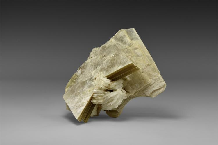Natural History - Muscovite Mineral Specimen.