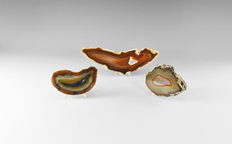 Natural History - Polished Agate Slab Group.