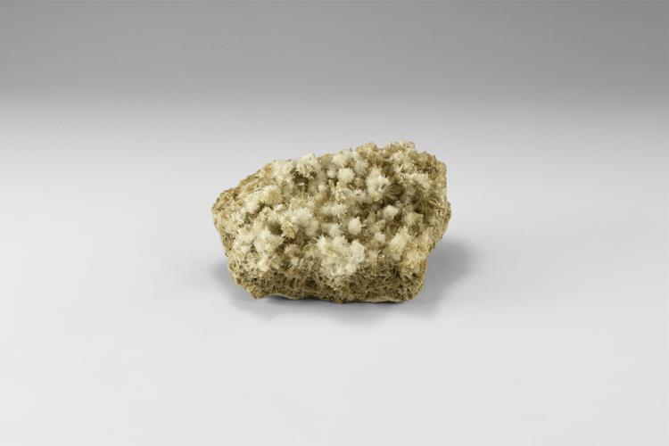 Natural History - Selenite Mineral Specimen.