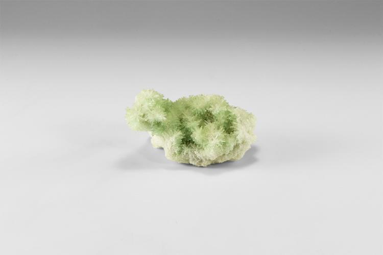 Natural History - Gypsum Mineral Specimen.