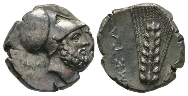 Ancient Greek Coins - Lucania - Metapontum - Leukippus Nomos